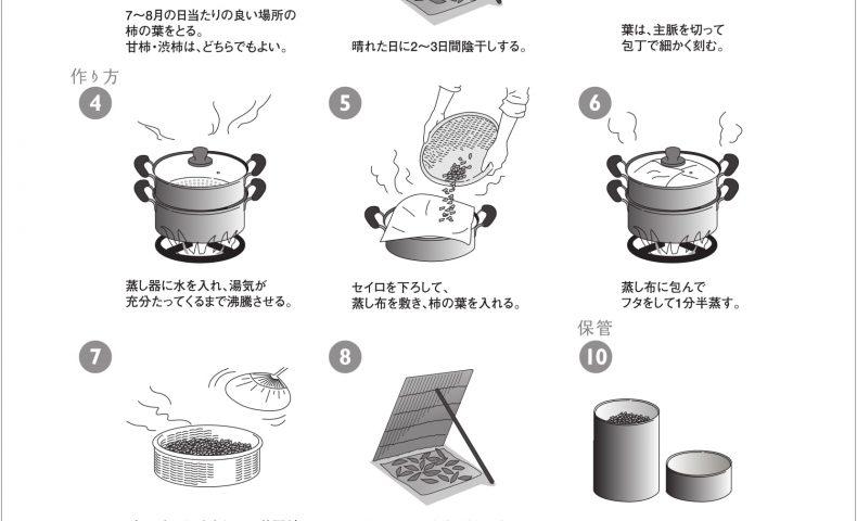 柿茶・柿の葉茶 作り方